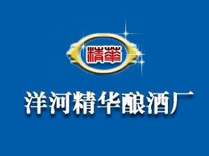 江苏洋河精华酒业