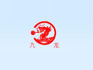 福建省九龙兴隆进出口有限公司