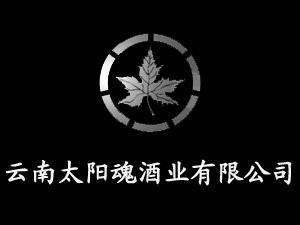 云南太阳魂酒业有限公司