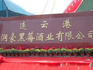 连云港润豪黑莓酒业有限公司