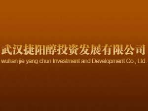 武汉捷阳醇投资发展有限公司