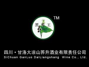 甘洛大凉山荞升酒业有限责任公司