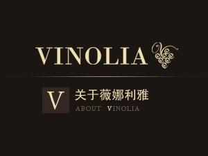北京薇娜利雅国际贸易有限责任公司