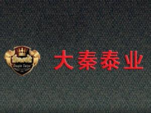 青岛大秦泰业经贸有限公司