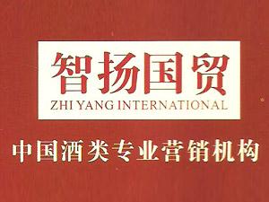上海智扬国际贸易有限公司