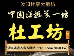 汝阳杜康杜工坊全国运营中心