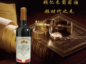 广州丙林商贸有限公司