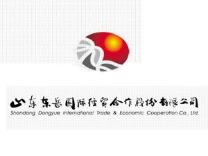 山东东岳国际经贸合作股份有限公司