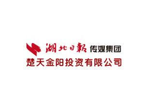 湖北武汉楚天金阳投资有限公司