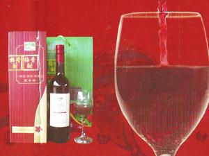 文成县真谷酒业有限公司