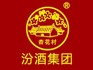 杏花村白玉坊生态原浆系列产品全国运营中心