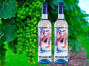 广州市安居宝酒业有限公司