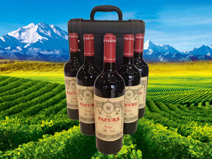上海再创辉煌酒业有限公司