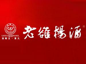 洛阳王美久商贸有限公司