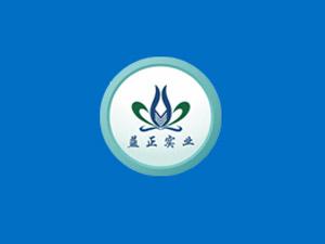 上海益正实业有限公司