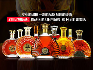 深圳市加枫红贸易有限公司