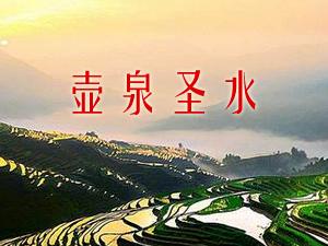 山西・广灵壶泉酿酒厂