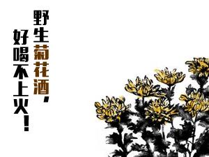 河南省淇县云梦海鑫酒厂