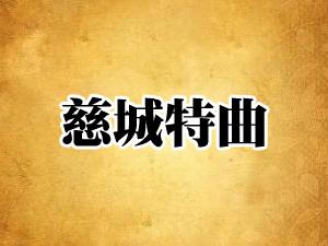 四川慈城酒业有限公司