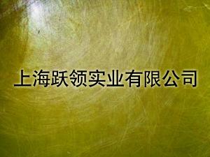 上海跃领实业有限公司