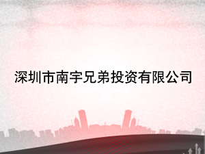 深圳市南宇兄弟投资有限公司