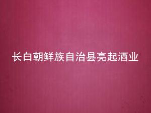 长白朝鲜族自治县亮起酒业有限公司