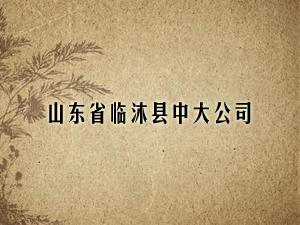 山东省临沐县中大公司