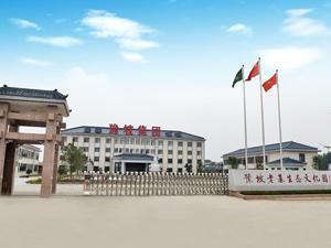 豫坡企业集团