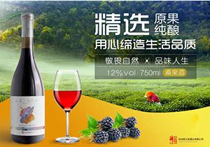桂林醉义堂酒业有限公司