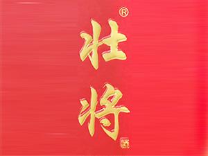 江西智道企业管理有限公司(壮将酒业)