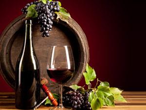 赤峰金马鞍葡萄酒业有限责任公司