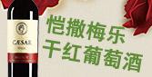 上海久窖实业有限公司