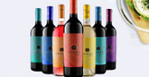 宁夏类人首葡萄酒业有限公司