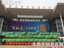 好酒网在2016第十届山东糖酒会将宣传工作做到极致