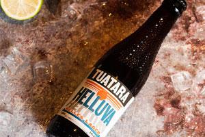 新西兰大蜥蜴新光明拉格精酿啤酒