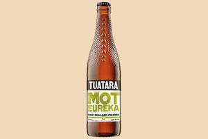 大蜥蜴新西兰皮尔森啤酒