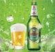 跨越1.3万公里,青岛啤酒节开到非洲超大市场