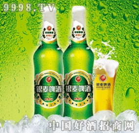 银麦啤酒经典二十