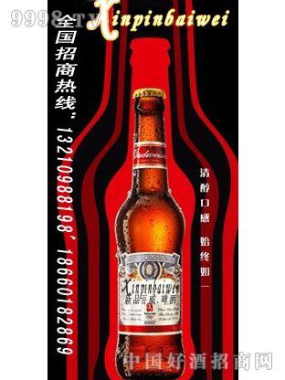 夜场新品百威啤酒单支