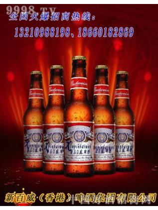 夜场新品百威啤酒5支