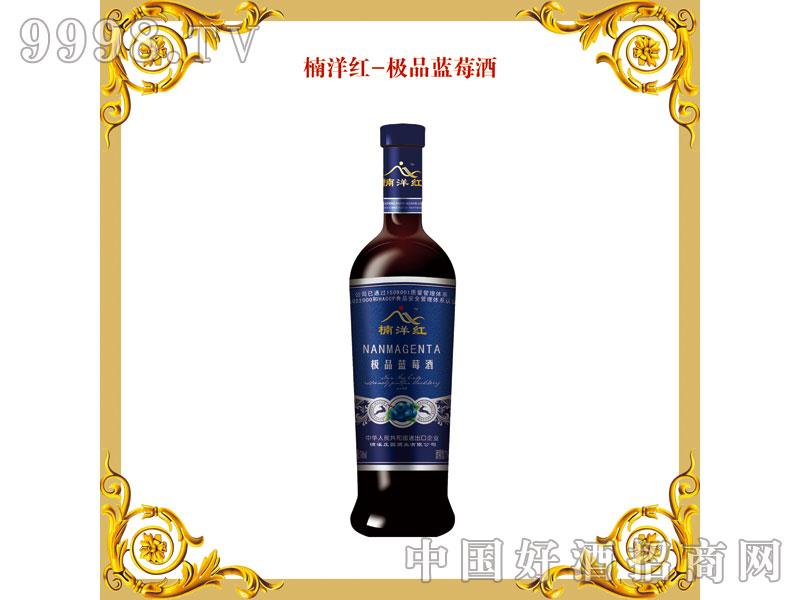 楠洋红极品蓝莓酒