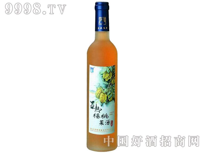 亚热杨桃果酒