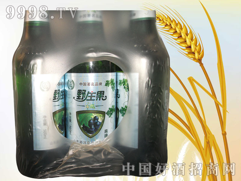 500ml野生果味啤塑包