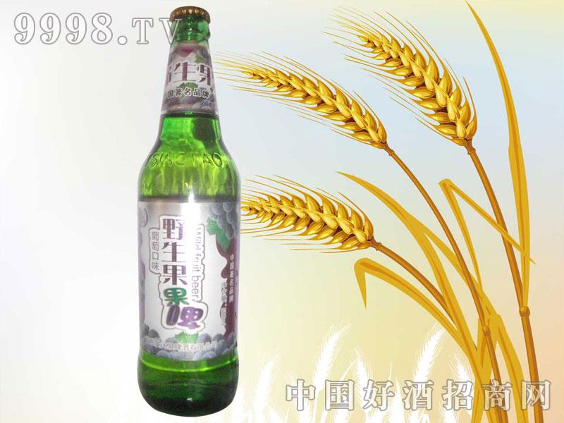 500ml野生果啤