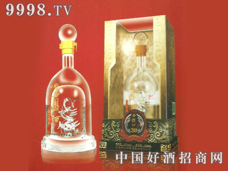 雅韵级 酒海封藏 30年