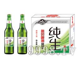 500毫升啤酒招商 大瓶纯生啤酒