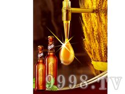 S.Benz奔驰啤酒&#8226动感 瓶装