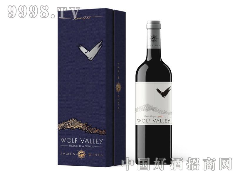禾富山谷-2007卡本纳干红葡萄酒