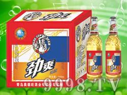 500ml澳德旺劲爽啤酒