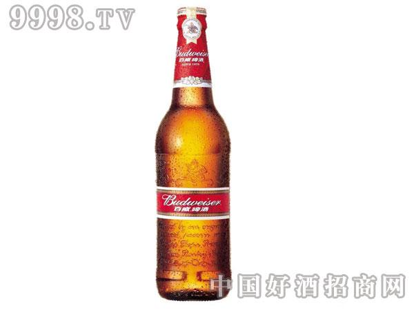 百威啤酒(瓶装)330ml×24